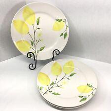 Sur La Table Lemon Dinner Plates Set of 4  10 3/4