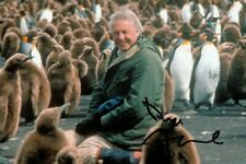 Sir David Attenborough Signed 6x4 Photo Blue Planet II Wildlife Autograph + COA