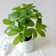 9 Branch Latex Artificial Pachira Plant Tree Wedding Home Decor Green No Vase
