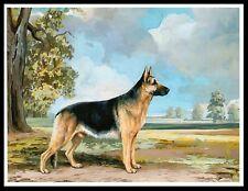 GERMAN SHEPHERD GREAT VINTAGE STYLE IMAGE DOG ART PRINT POSTER