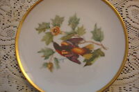 Hutschenreuther Germany Baltimore Oriole Plate from the paintings of Audubon[94]