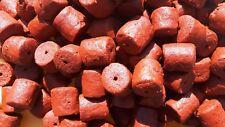 KLAGES Halibut Pellets 1 Kg 20mm rot (6 50 Eur/kg)