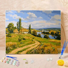 DIY Acrylic Paint By Number kit Painting On Canvas 16X20'' Hopeful Field 2204