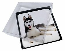 4x Siberian Husky Dog Picture Table Coasters Set in Gift Box, AD-H55C