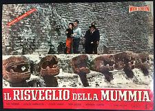 CINEMA-fotobusta IL RISVEGLIO DELLA MUMMIA grant,MILLER
