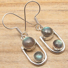 Silver Plated Blue Labradorite Earrings Free Shipping on Additional Items!