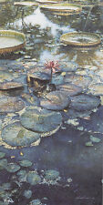 """Water Lilies in Bloom"" Steve Hanks Limited Edition Fine Art Print"