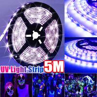 5M 300LED UV Light Strip 3528 Flexible Purple Blacklight lamp Waterproof 12V