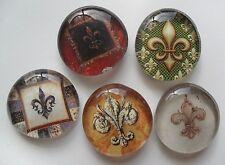 5 French FLEUR DE Lis Glass Magnets Kitchen Art Decor