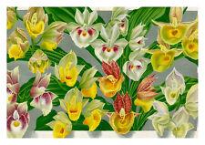 Linden Orchid 2 by Jean Linden Orchids A4 Art Print Flower Art