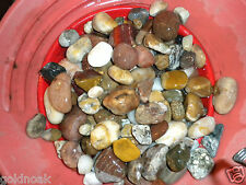 COLLECT OR PAINT RIVER & MOUNTAIN ROCKS! SAVE THE BEST AND CRACK THE REST.HOBBY?