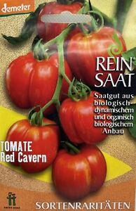 Tomate Red Caverne - Saatgut - Samen  - Demeter aus biologischem Anbau ReinSaat