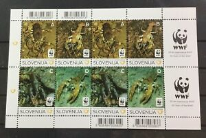 SLOVENIA #896. MINI-SHEET, 50 YEARS WWF, SEA/MARINE LIFE. MNH