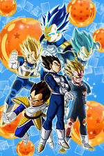 Dragon Ball Z/Super Poster Vegeta Evolution to Blue 12in x 18in Free Shipping