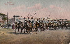 Postcard Cairo Egypt Egyptian Cavalries Military