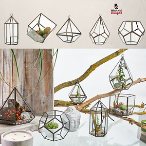 Terrarium Showcase Display Glass & Metal Geometric Shaped Hanging Container