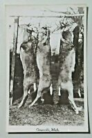 Deer Pole Hunting in Greenville, Michigan Vintage Real Photo Postcard RPPC 8106