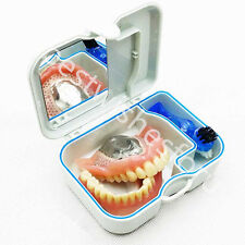 Denture Storage Box Case With Mirror And Clean Brush Dental Appliance Container
