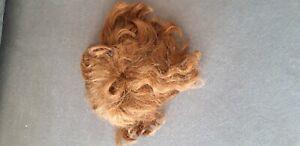 Ancienne coiffe ou postiche (cheveux véritable ?) ou perruque de poupée en porce