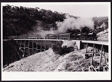 Vintage Photograph Adelaide Hills Train Viaduct with Train 1910's Era