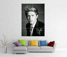 NIALL HORAN ONE DIRECTION 1D TAKE ME HOME UP ALL NIGHT GIANT ART POSTER H221