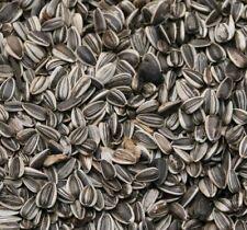 Supravit Sonnenblumenkerne gestreift 5 kg - Vogelfutter - Wildvogelfutter