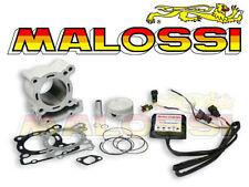 Kit Cylindre MALOSSI 166 APRILIA RS4 DERBI Senda 125 Terra NEUF 3115325 cylinder