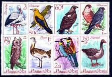 HUNGARY - 1968. International Council for Birds - MNH
