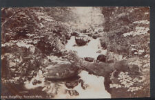 Wales Postcard - Dolgelley, Torrent Walk    RS7499