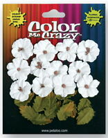Petites CMC WHITE 12 Flowers 2cm+12 Leaves 15x20mm Paper Darjeeling Petaloo Ver