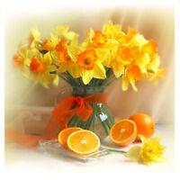 DIY 5D Diamond Embroidery Painting Cross Stitch Kit Flowers oranges Home N8 U2D4