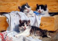 Dream-art Oil painting Julius Adam The Playful Kittens lovely & cute cats canvas