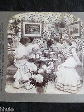STA046 scène de genre mode décoration 1899 STEREO albumen Photography Stereoview