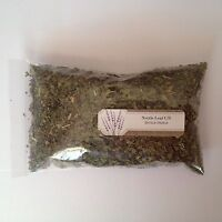1 oz. Nettle Leaf C/S (Urtica Dioica) <28 g / .063 lb> Dried, Stinging