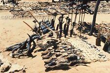 1986 COLOR SLIDE Africa Mt Kenya Safari Club #33 Animal Skulls and Horns 4 Sale