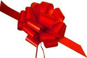 """25 5"""" RED SATIN PULL BOWS GIFT WRAP CHRISTMAS SUPPLIES Gifts Wreaths 20 LOOP"""