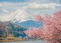 A1 | Mount Fuji Poster Print 60 x 90cm 180gsm Japan Sakura Wall Art Decor #14403