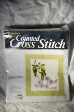 Anchor Counted Cross Stitch Costa Rica Climber Kit No. 45
