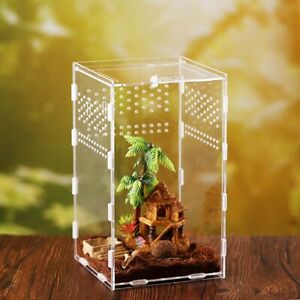 Container Reptile Incubator Insect Supplies Hatching Terrariums Breeding Box
