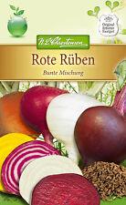 """N.L.Chrestensen Rote Rüben """" Bunte Mischung """" Samen für ca. 100 Pflanzen   4112"""