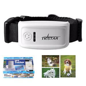 GPS Tracker für Hunde Katzen Haustier TK909 Sprach Monitor Finder Wasserdicht