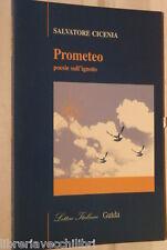 PROMETEO Poesie sull ignoto Salvatore Cicena Guida Lettere Italiane Letteratura