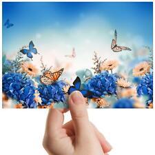 """Butterflies Flowers Garden Small Photograph 6"""" x 4"""" Art Print Photo Gift #8568"""