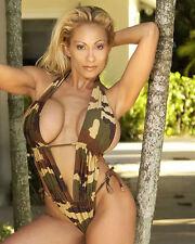 Glossy 8x10 #3 of super busty porn star Lana Lotts (AKA Ava Lauren) - NON-NUDE