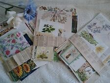 Vintage paper flowers floral flora theme ephemera for craft decoupage scrapbooks