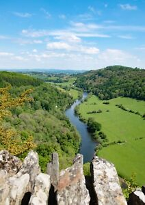 View from Symonds Yat Rock river forest Photographic Epson Print only (Unframed)