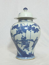 Chinese Blue and White Porcelain Jar With Cover and Mark P347