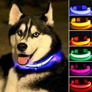 Collar De Perro Con Luz De Deguridad Para Noche Luces Brillantes Nylon Mascotas