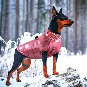 Waterproof Dog Clothes Warm Coat Cute Girl Winter Jacket for Small Medium Dogs