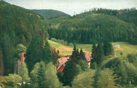 Ansichtskarte Allerheiligen Schwarzwald   Jurhaus Ruine Kriegerdenkmal (Nr.9176)